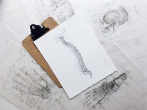 waist-bone